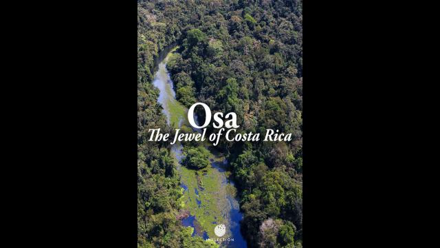 OSA : The Jewel of Costa Rica