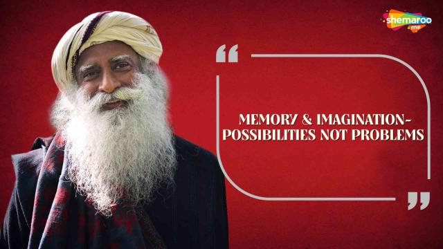 Memory & Imagination-Possibilities Not Problems