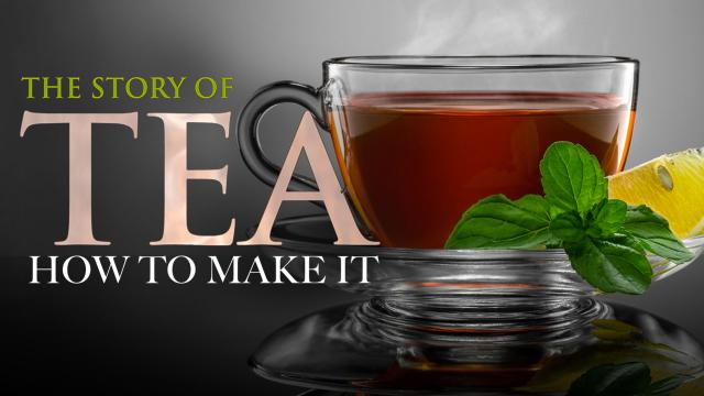 The Story of Tea and How to Make it!