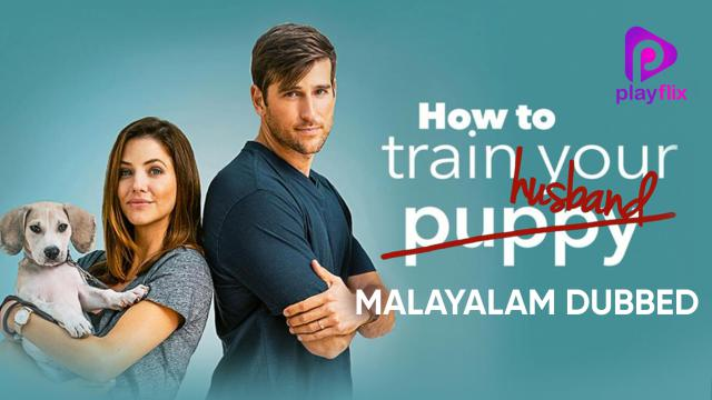 How To Train Your Husband (Malayalam Dubbed)