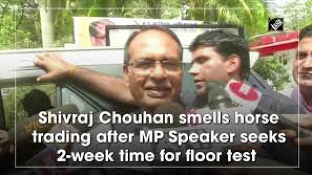 MP Govt Crisis: Speaker gives 2-weeks time for the floor test, Shivraj questions horse training?