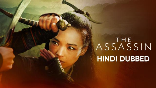 The Assassin (Hindi Dubbed)